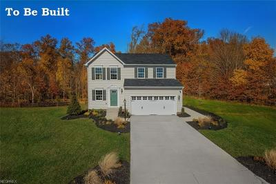 North Ridgeville Single Family Home For Sale: 36567 Stockport Mill Dr