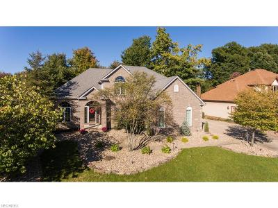 Strongsville Single Family Home For Sale: 20432 Scott Dr