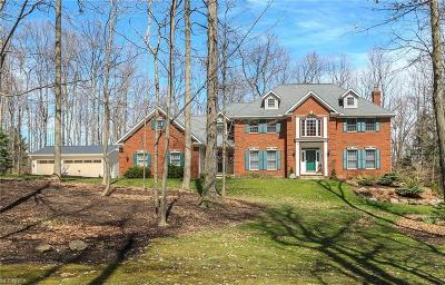 Geauga County Single Family Home For Sale: 11500 Gate Post Ln