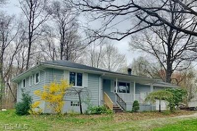 Garrettsville Single Family Home For Sale: 11443 Parkman Rd