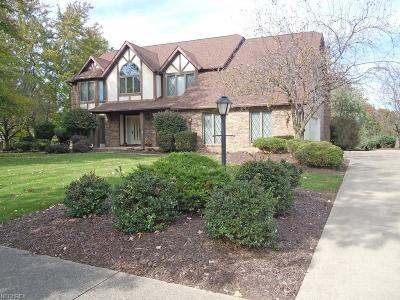 North Royalton Single Family Home For Sale: 6820 Iron Gate Dr