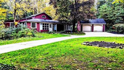 Lake County Single Family Home For Sale: 7235 Cascade Rd