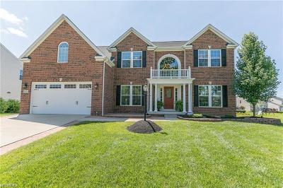 Medina Single Family Home For Sale: 3182 Stillwater Dr