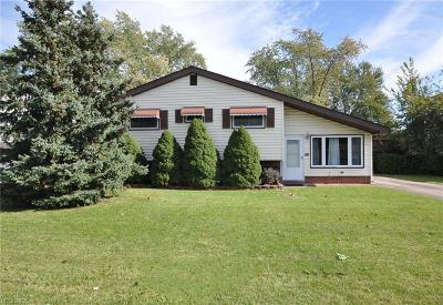 Elyria Single Family Home For Sale: 751 Abbe Rd North