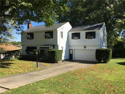 Youngstown Single Family Home For Sale: 2555 Skywae