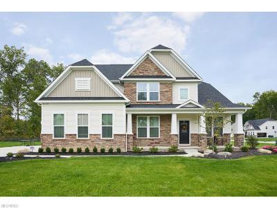 Avon Single Family Home For Sale: 35172 Katlin Ct
