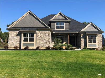 Broadview Heights Single Family Home For Sale: 3697 Braemar Drive