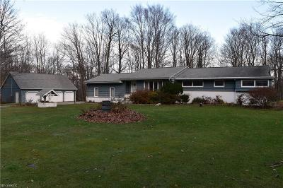Geauga County Single Family Home For Sale: 11919 Storybook Ln