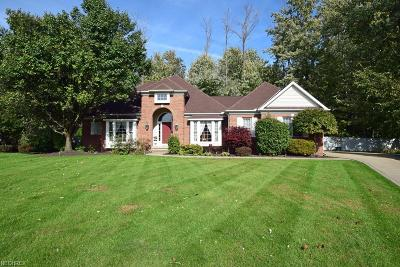 Lake County Single Family Home For Sale: 6915 Chairmans Ct