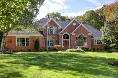 Lake County Single Family Home For Sale: 2972 Lamplight Ln