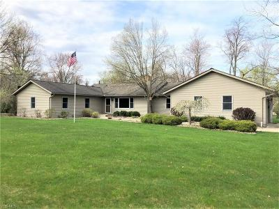 Canfield Single Family Home For Sale: 5741 Herbert Rd