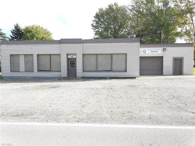Geneva Commercial For Sale: 1500 Harpersfield Road