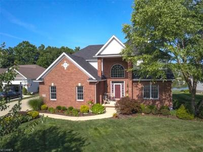 Summit County Single Family Home For Sale: 5019 Pebblehurst Dr