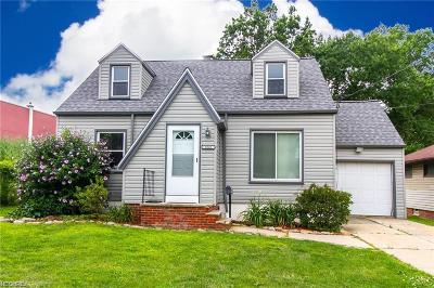 Wickliffe Single Family Home For Sale: 1040 Worden Rd