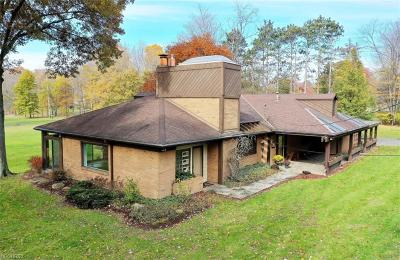 Poland Single Family Home For Sale: 70 Audubon Ln