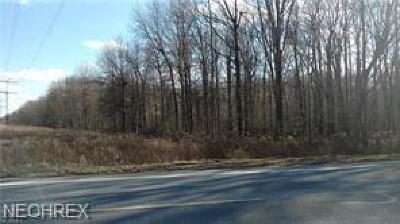 Lorain County Residential Lots & Land For Sale: Chestnut Ridge Rd
