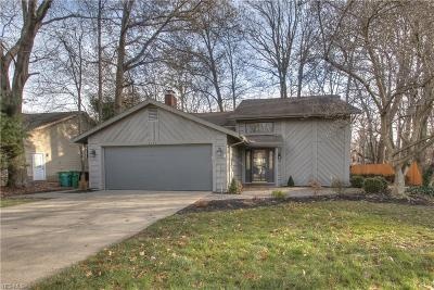 Mentor Single Family Home For Sale: 9079 Bluejay Ln