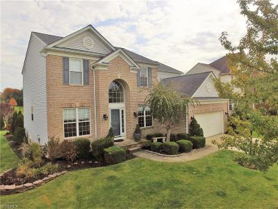Brunswick Single Family Home For Sale: 1243 Terrington Dr