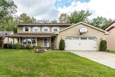 Mayfield Heights Single Family Home For Sale: 6356 Woodhawk Dr