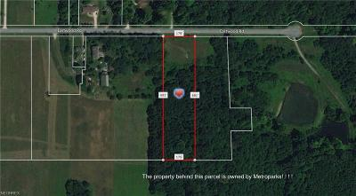 Medina County Residential Lots & Land For Sale: Eastwood Rd