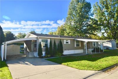 Olmsted Township Single Family Home For Sale: 3 Shortline Dr