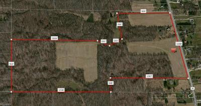 Medina County Residential Lots & Land For Sale: 1016 State Rd