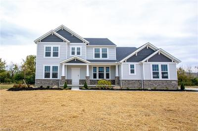 Single Family Home For Sale: 39179 McIntosh Pl