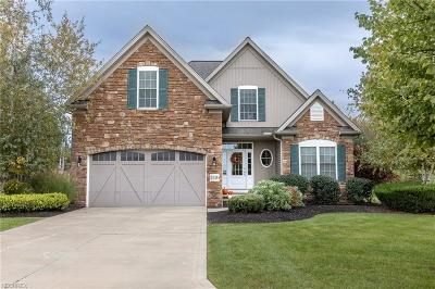 Mentor Single Family Home For Sale: 5576 Sand Dune Ct