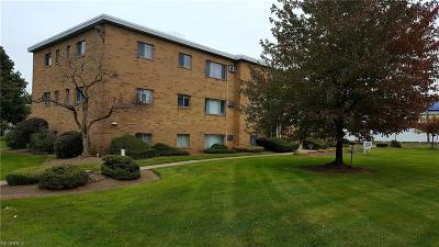 North Royalton Condo/Townhouse For Sale: 5200 Royalton Rd #12A