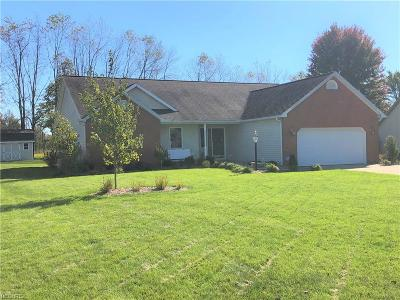 Zanesville Single Family Home For Sale: 480 Spring Valley Dr