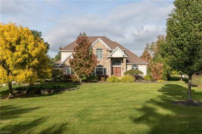 Cuyahoga County Single Family Home For Sale: 2514 Ginger Wren