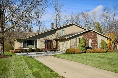 Cuyahoga County Single Family Home For Sale: 36805 Valley Forge Dr