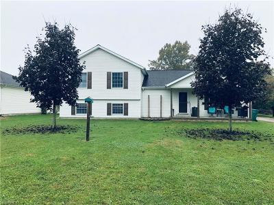 Single Family Home For Sale: 255 Kennedy Dr