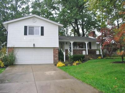 Ravenna Single Family Home For Sale: 3122 Clearview Rd