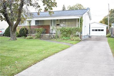 Lorain Single Family Home For Sale: 4620 Andover Ave