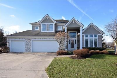 Westlake Single Family Home For Sale: 30990 Walden Dr #9