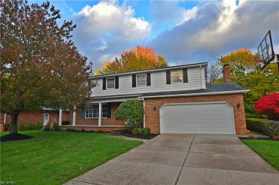 Seven Hills Single Family Home For Sale: 6743 Donna Rae Dr