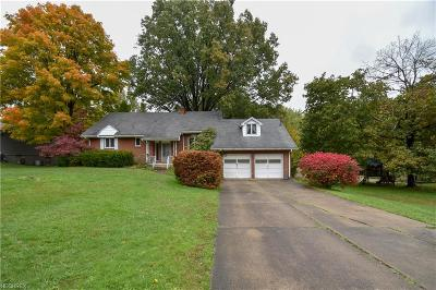 Canfield Single Family Home For Sale: 4358 Meadowview Dr