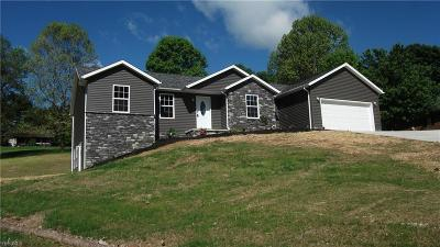Zanesville Single Family Home For Sale: 5140 Pine Valley Dr