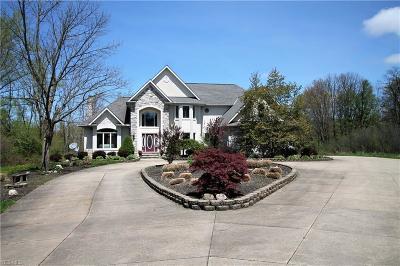 Solon Single Family Home For Sale: 31295 Arthur Rd