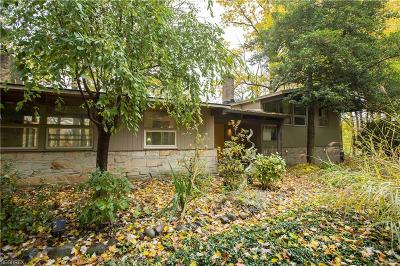 Chagrin Falls Single Family Home For Sale: 8500 Lucerne Dr