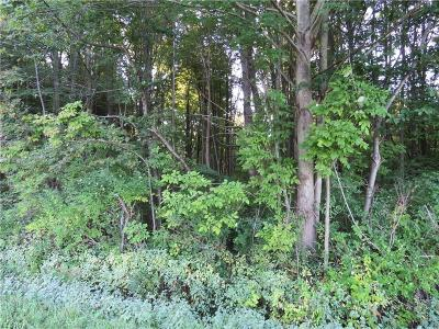Ashtabula County Residential Lots & Land For Sale: Village Green