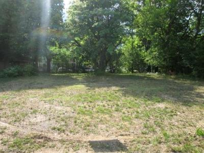 Cuyahoga County Residential Lots & Land For Sale: 1186 East 87th St