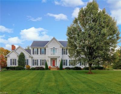 Summit County Single Family Home For Sale: 6823 Saint Regis Blvd