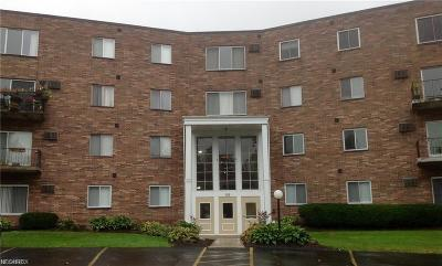 Chagrin Falls Condo/Townhouse For Sale: 355 Solon Rd #406