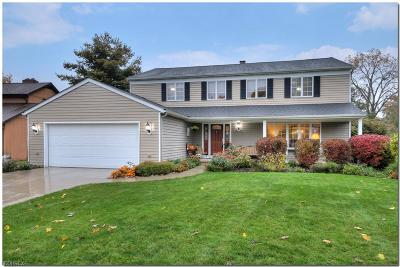 North Olmsted Single Family Home For Sale: 30780 Windy Hollow Ln