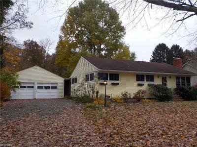 Single Family Home For Sale: 385 Airport Rd