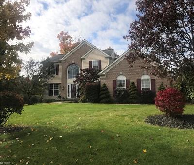 Brunswick Single Family Home For Sale: 922 Edgar Ln