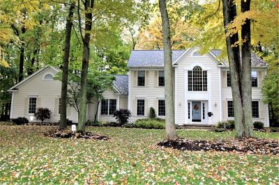 Summit County Single Family Home For Sale: 7543 Herrick Park Dr