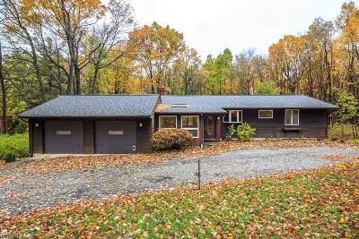 Geauga County Single Family Home For Sale: 10240 Mayfield Rd
